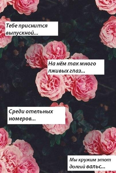 нам Феодосию текст песни хоми последний выпускной железнодорожных билетов Арзамас