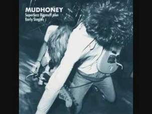 Mudhoney - Hate The Police (Dicks Cover)