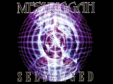 Meshuggah- Suffer in Truth (Demo Version)
