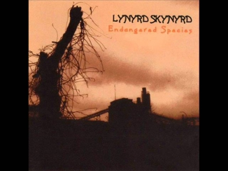 Lynyrd Skynyrd - Down South Jukin'.wmv