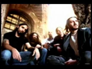 Orphaned land - the warrior